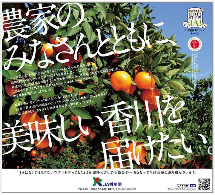 平成30年2月発行の四国新聞への掲載広告