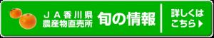 banner_syun